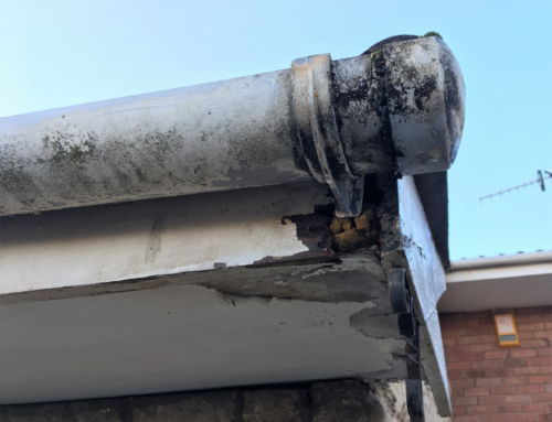 Is Gutter Cleaning Required by your Home Insurance Policy?