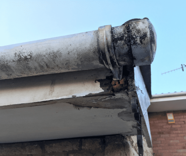 Gutter Cleaning Home Insurance