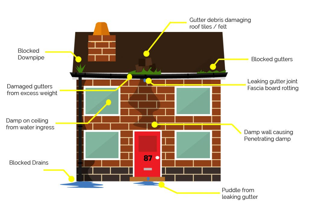 Gutter Cleaning Problems
