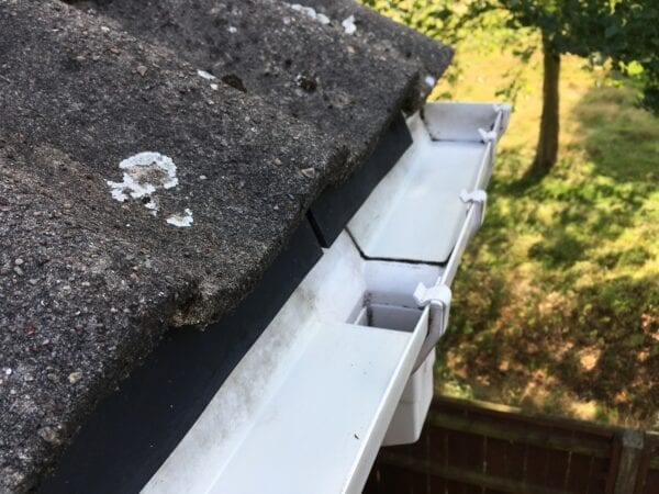 Cleaned Gutters