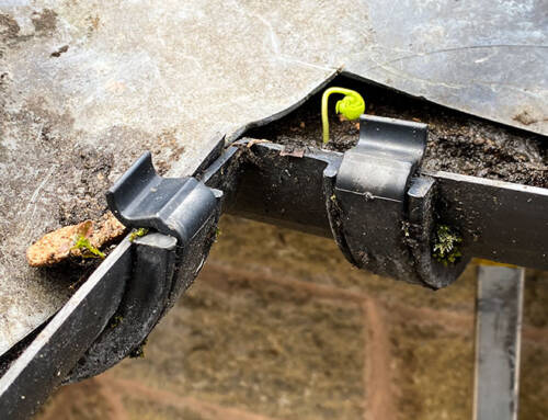 Gutter Cleaning in Spring is important
